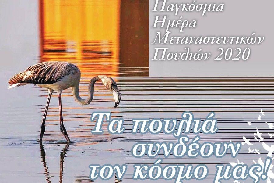 «Τα πουλιά συνδέουν τον κόσμο μας!»
