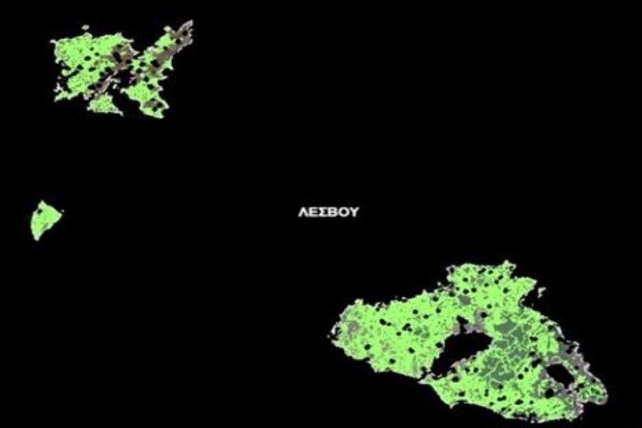 «Οι χρήσεις των δασικών εκτάσεων αλλάζουν μόνο με πολιτική απόφαση»