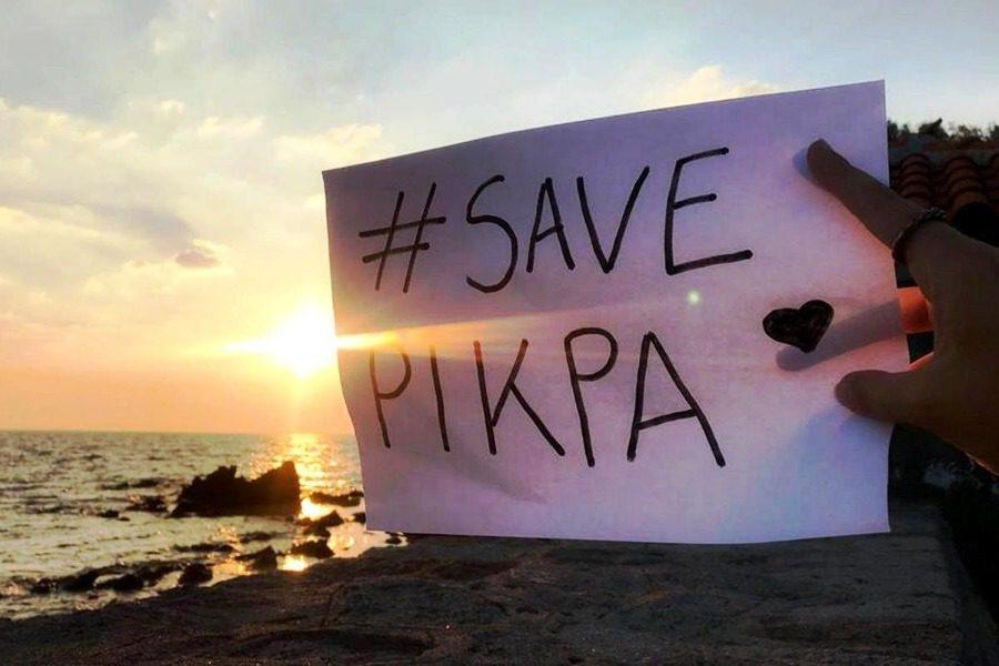 Ελληνικές και διεθνείς οργανώσεις υπέρ του ΠΙΚΠΑ