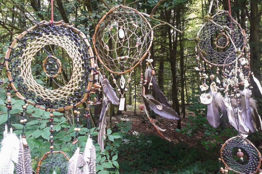 «Η τέχνη της Φύσης» στα δάση της Λέσβου