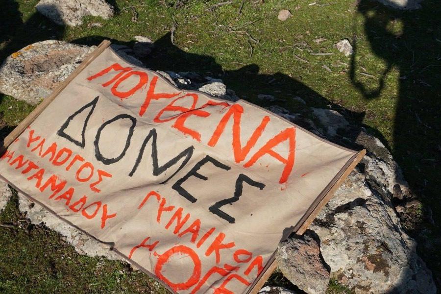 Ένα πικ‑νικ γυναικείας διαμαρτυρίας με μια ειρηνική ελιά!