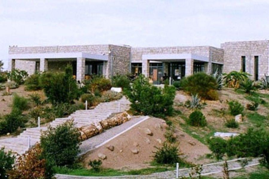 4 θέσεις στο Μουσείο Φυσικής Ιστορίας Απολιθωμένου Δάσους Λέσβου