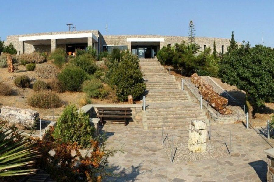 5 θέσεις στο Μουσείο Φυσικής Ιστορίας Απολιθωμένου Δάσους