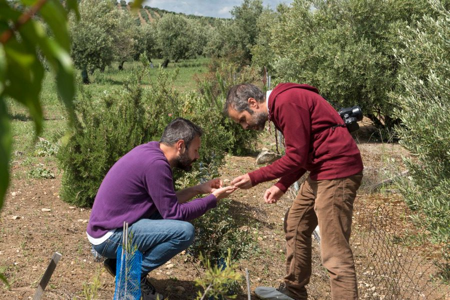 «Τσακίζει τους νέους αγρότες των νησιών το Υπουργείο Αγροτικής Ανάπτυξης»
