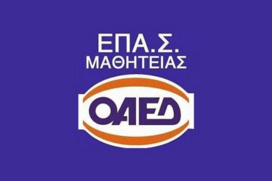 8 ειδικότητες στην ΕΠΑΣ Μυτιλήνης του ΟΑΕΔ