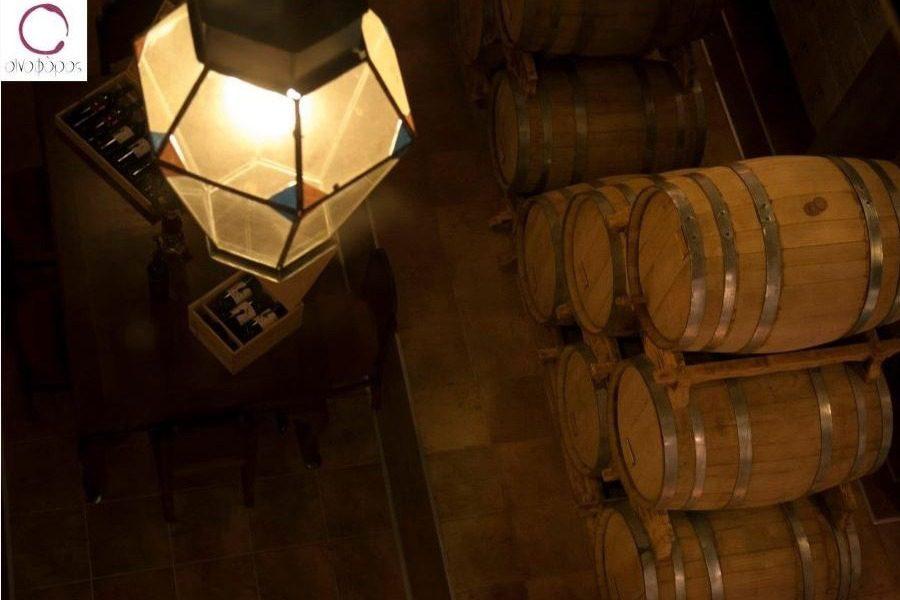Οι δρόμοι του κρασιού οδηγούν στον «Οινοφόρο»