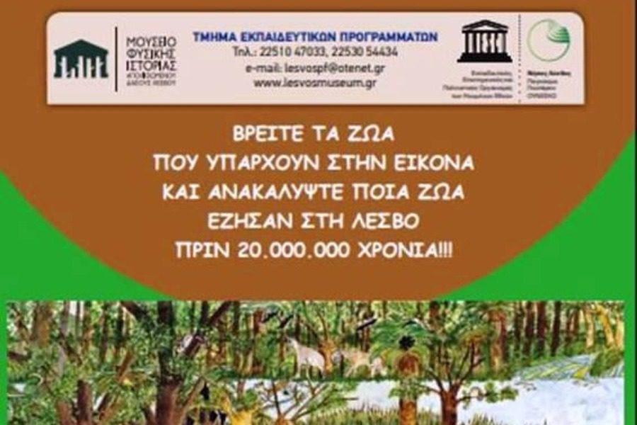 Eξερευνήστε το Απολιθωμένο Δάσος και το Γεωπάρκο Λέσβου
