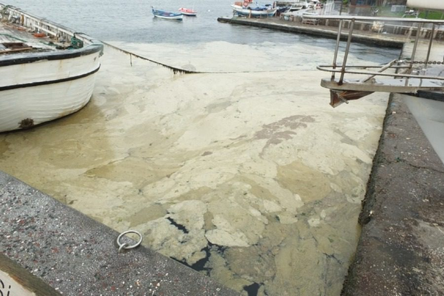 Ο θάνατος μιας θάλασσας: Ο Μαρμαράς ασφυκτιά